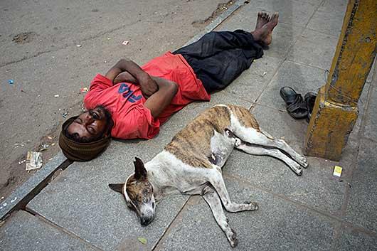 バンガロール 交差点で昼寝