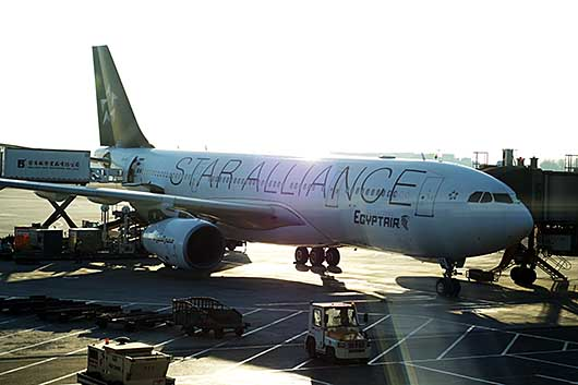 スターアライアンス塗装機 エジプト航空