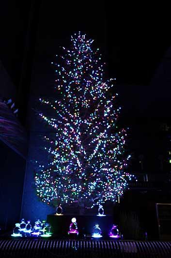 2013 ミキモトクリスマスツリー