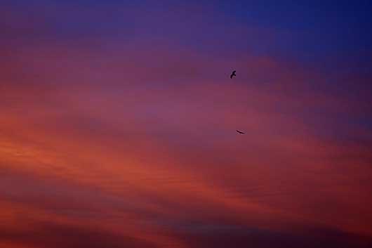 バンガロール 夕焼け空