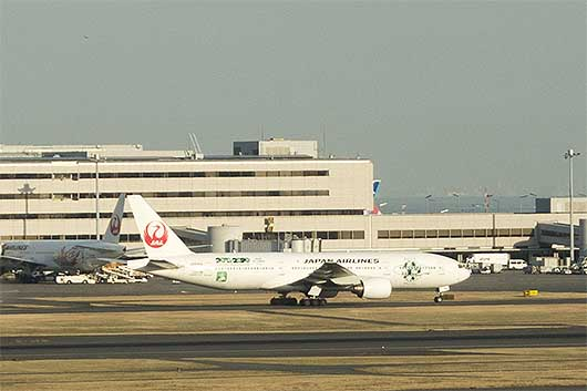 JALエコジェット・ネイチャー特別塗装機
