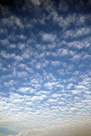 バンガロール うろこ雲