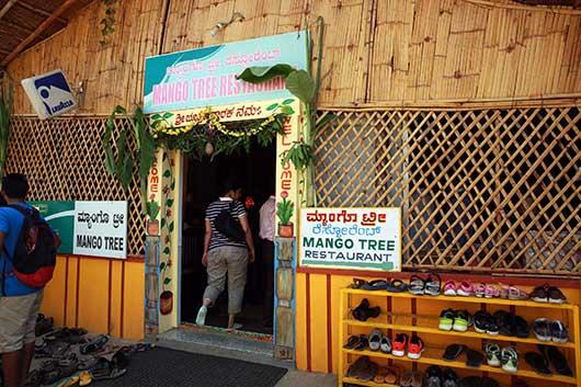 ハンピ Mango Tree