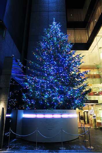 ミキモトのクリスマスツリー 2015