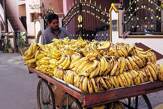 バンガロール バナナ売り
