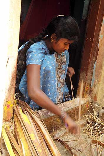 バンガロール 葉を割く女
