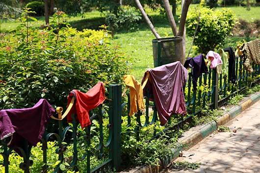 バンガロール 洗濯物を干す
